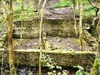 Coal Bank Mill (ruins)