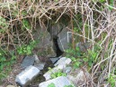 Holy Well (Photo credit: Fr John Musther.