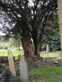 Churchyard at Ysbyty Cynfyn (Photo Credit Penny Mayes, Geograph)
