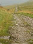 Roman Road at Bainbridge (Photo Credit Tom Holland)