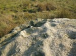 Winter Hill Stone (Top).