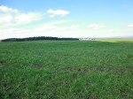 Primrose Hill Earthwork, near Gisburn, Lancashire