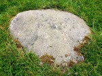 "The ""possible"" cup-marked stone in the stone circle."