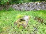 St Helen's Well, near Draughton, North Yorks.