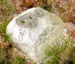 Stone with cup-marks on Rivock Edge, west Yorks.