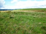 Cobers Laithe Earthwork, near Nappa (looking north-west).