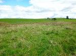 Cobers Laithe Earthwork, near Nappa (looking north-east).