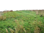 Cobers Laithe Earthwork (grassy bank and ditch)