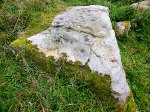 Dragon Stone - cup-marked rock near Steeton, west Yorkshire