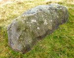 Cup-Marked rock in the field near Cob Stone.